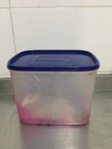 recipiente cocina compost